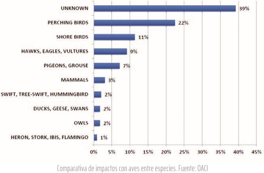 Comparativa de impactos con aves entre especies. Fuente: OACI